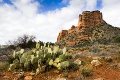 Sedona亚利桑那供徒步旅行的小道导致惊人的红色岩层 库存图片