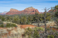 Sedona Stock Photography