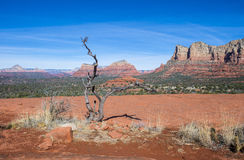 Sedona Royalty Free Stock Photography