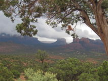 Sedona Arizona On A Cloudy Day. This is Sedona Arizona on a cloudy rainy day.  The beautiful red rocks and the clouds in the sky are a wonderful backdrop.  There Royalty Free Stock Images