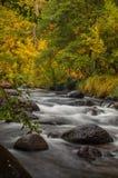 Sedona Arizona Etats-Unis un jour pluvieux d'automne Image stock