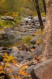 Sedona Arizona Etats-Unis un jour pluvieux d'automne Photographie stock