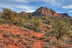 Sedona Arizona har den härliga apelsinen vaggar och pelare i öknen royaltyfria foton