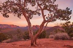 Sedona Arizona Scenic Sunset Stock Images