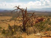 Sedona Arizona Top Of Long Canyon Trail Stock Image
