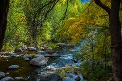 Sedona Arizona USA Fall Colors. Boulders line the bed of the creek Royalty Free Stock Photos