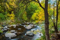 Sedona Arizona USA Fall Colors. The creek starting to display the colors of fall Stock Images