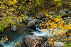 Sedona Arizona USA Fall Colors. The gentle flow of the creek over the boulders of sedona Royalty Free Stock Photography