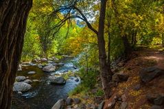 Sedona Arizona USA Fall Colors. The sun peeps through the clouds to brighten the creek below Royalty Free Stock Images