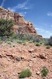 sedona för arizona ökenberg Arkivfoto