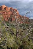 sedona för arizona bildanderock Royaltyfri Foto