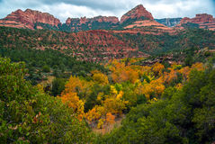 Sedona foliage on a cloudy fall day Royalty Free Stock Photography