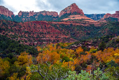 Sedona foliage on a cloudy fall day. Oak creek canyon with the red rocks in the background Stock Images