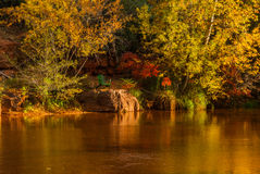 Sedona foliage on a cloudy fall day. Old chair sitting on a rock overlooking the stream Stock Photo