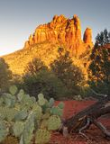 Sedona glows at sundown, Arizona stock image