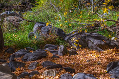 Sedona hermoso Arizona en Sunny Autumn Day Fotografía de archivo