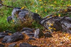 Sedona hermoso Arizona en Sunny Autumn Day Imagen de archivo libre de regalías