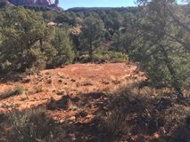 Sedona Hiking Trail Bell. Sedona hiking trail in Arizona red rocks Stock Photos
