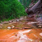 Sedona ist für seine Felsen des roten Sandsteins berühmt lizenzfreie stockfotografie