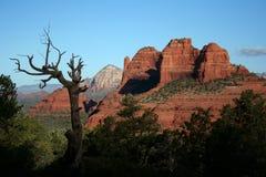 sedona krajobrazu Zdjęcie Royalty Free