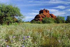Sedona Landscape Stock Photo