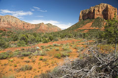 Sedona Landscape Stock Photos