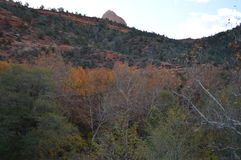 Sedona Mountains. Autumn Scene  in Sedona, Arizona Stock Images