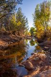 Sedona-Nebenfluss mit Fall-Farben lizenzfreie stockfotos