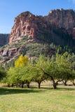 Sedona and Oak Creek Canyon Landscapes Royalty Free Stock Photography