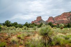 Sedona and Oak Creek Canyon Lanscapes. Red rocks of Sedona and Oak Creek Canyon stock photos
