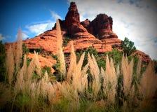 Sedona - parque de estado rojo de la roca Foto de archivo libre de regalías
