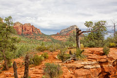 Sedona Red Rock Landscape Royalty Free Stock Photos