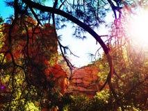 Sedona Red Rocks Arizona Stock Photos