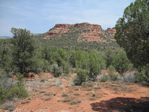 Sedona Red Rocks In Arizona. This is the Sedona Red Rocks In Arizona taken with a highway, mountain and road Stock Photo