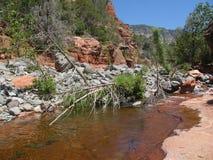 Sedona Slide Rock Area. Boulders block river at slide rock area in sedona, az Stock Photography
