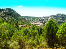 Sedona Wild Landscape. Of the trees and forest area Stock Photo
