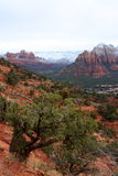 Sedona in Winter Royalty Free Stock Image
