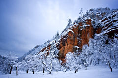 Sedona Winter landscape Royalty Free Stock Photos