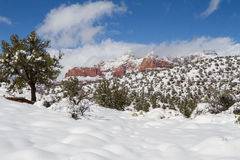 Sedona Winter Snow. A snow covered landscape in the red rocks of sedona arizona in winter Royalty Free Stock Images