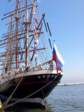 Sedov Stock Images