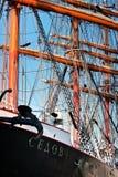 Sedov ship Stock Photos
