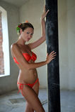 Seductive bikini model posing sexy Stock Photos