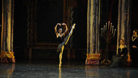The seductive Black Swan Augie Leah-The prince adult ceremony-ballet Swan Lake Stock Photos