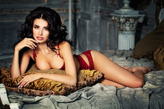 Seductive brunette beauty. Sexy woman in lingerie Royalty Free Stock Photography