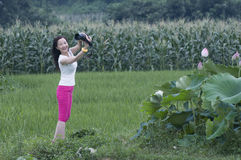 Seductive modelling of female photographer. A nifty female photographer was working in rice fields with a seductive modelling when she shoot royalty free stock photography