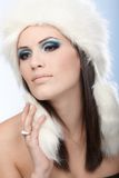 Seductive winter beauty Royalty Free Stock Image