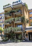 Sedum pachyphyllum the succulent plants on the balconies. Of a house in Sorrento. Italy Stock Image