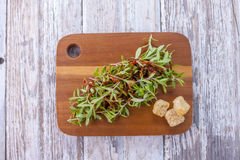 Sedum salad and croutons. Royalty Free Stock Image