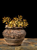 Sedum in un vecchio vaso di argilla incrinato sull'ardesia Fotografia Stock