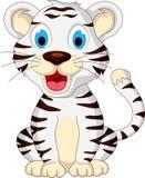 Seduta bianca della tigre del bambino sveglio Fotografie Stock Libere da Diritti